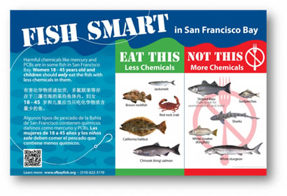San francisco bay pcbs tmdl for Are fish smart